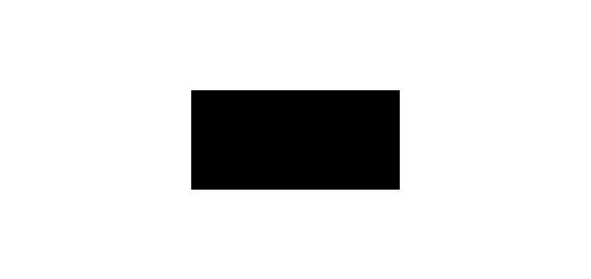LENS SEAL® BMW Group Logo
